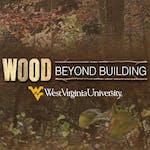 Wood Science: Beyond Building