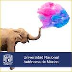 Ser más creativos by Universidad Nacional Autónoma de México