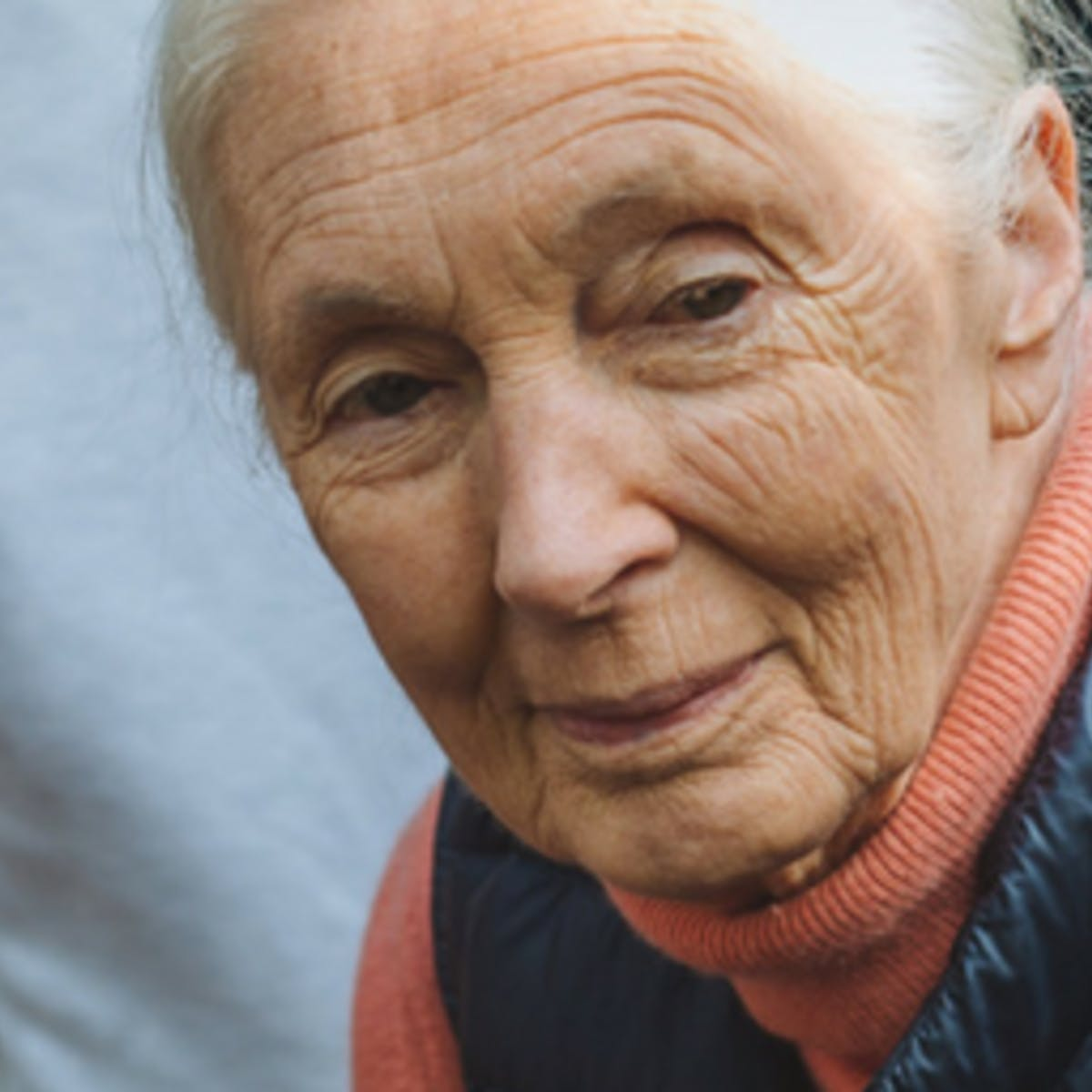 Compassionate Leadership Through Service Learning with Jane Goodall and Roots & Shoots