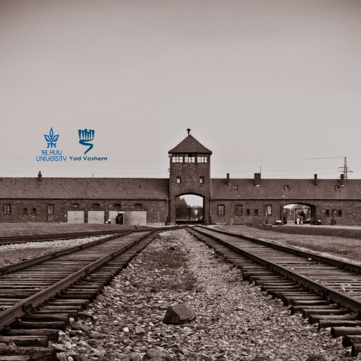 The Holocaust - An Introduction (II): The Final Solution