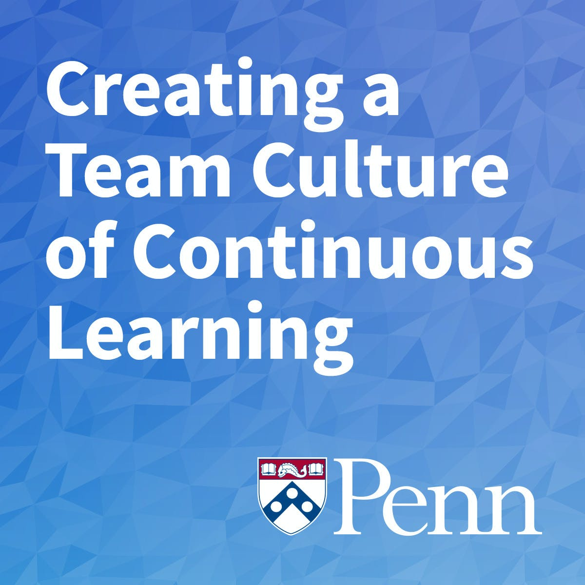 Creating a Team Culture of Continuous Learning