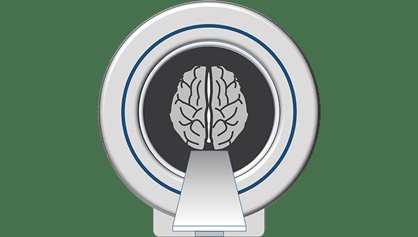 MRI Fundamentals