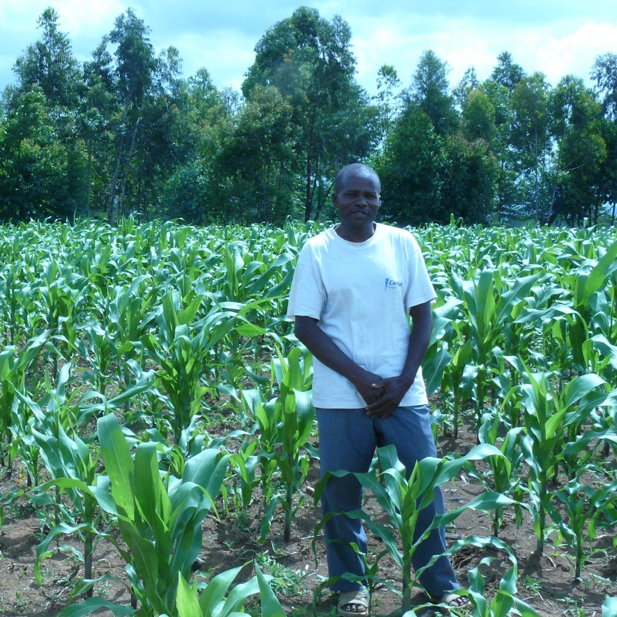 learn agriculture online free