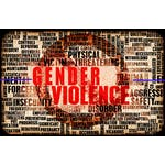 Confronting Gender Based Violence: Global Lessons for Healthcare Workers by Johns Hopkins University