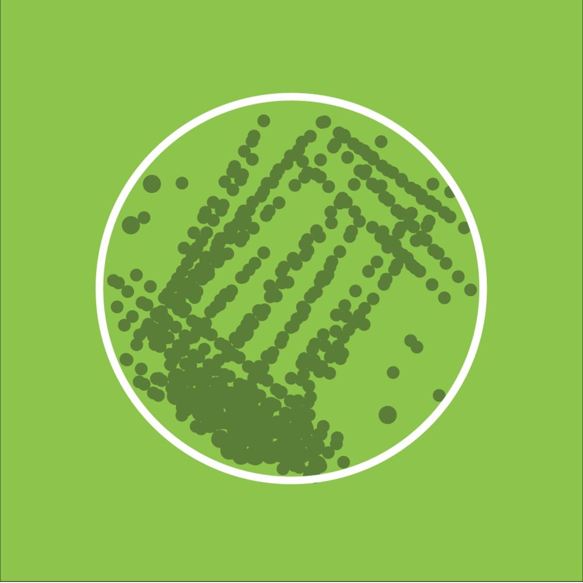 Introduction to Algae