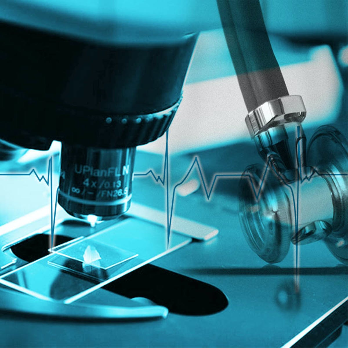 Introduction to Translational Science