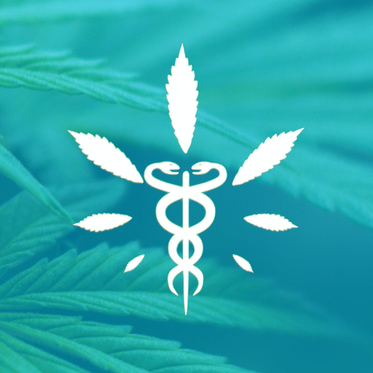 Medical Cannabis for Pain Control