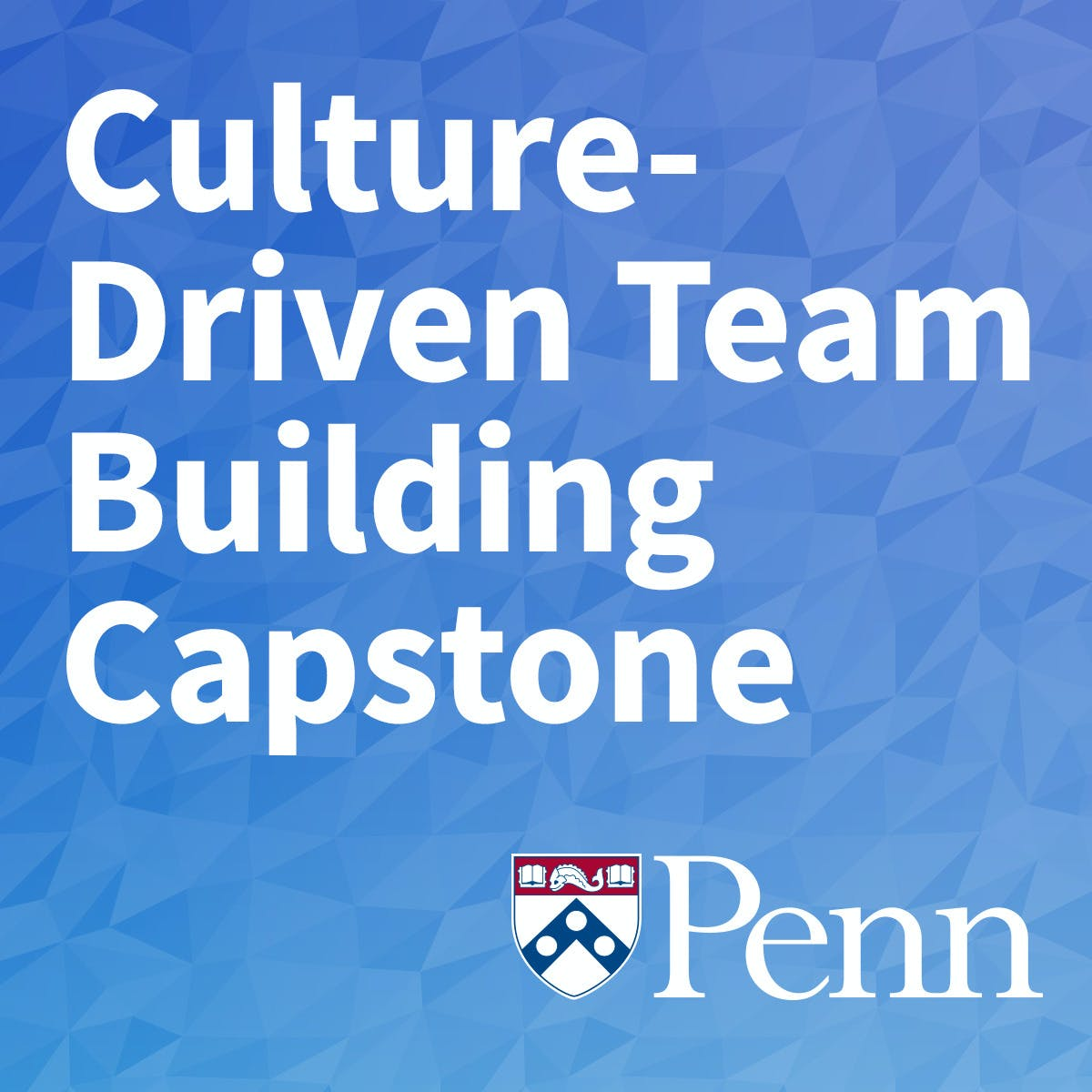 Culture-Driven Team Building Capstone