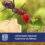 Finanzas personales by Universidad Nacional Autónoma de México