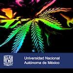 La verde y sus verdades by Universidad Nacional Autónoma de México