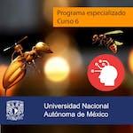 Comportamiento adaptativo by Universidad Nacional Autónoma de México