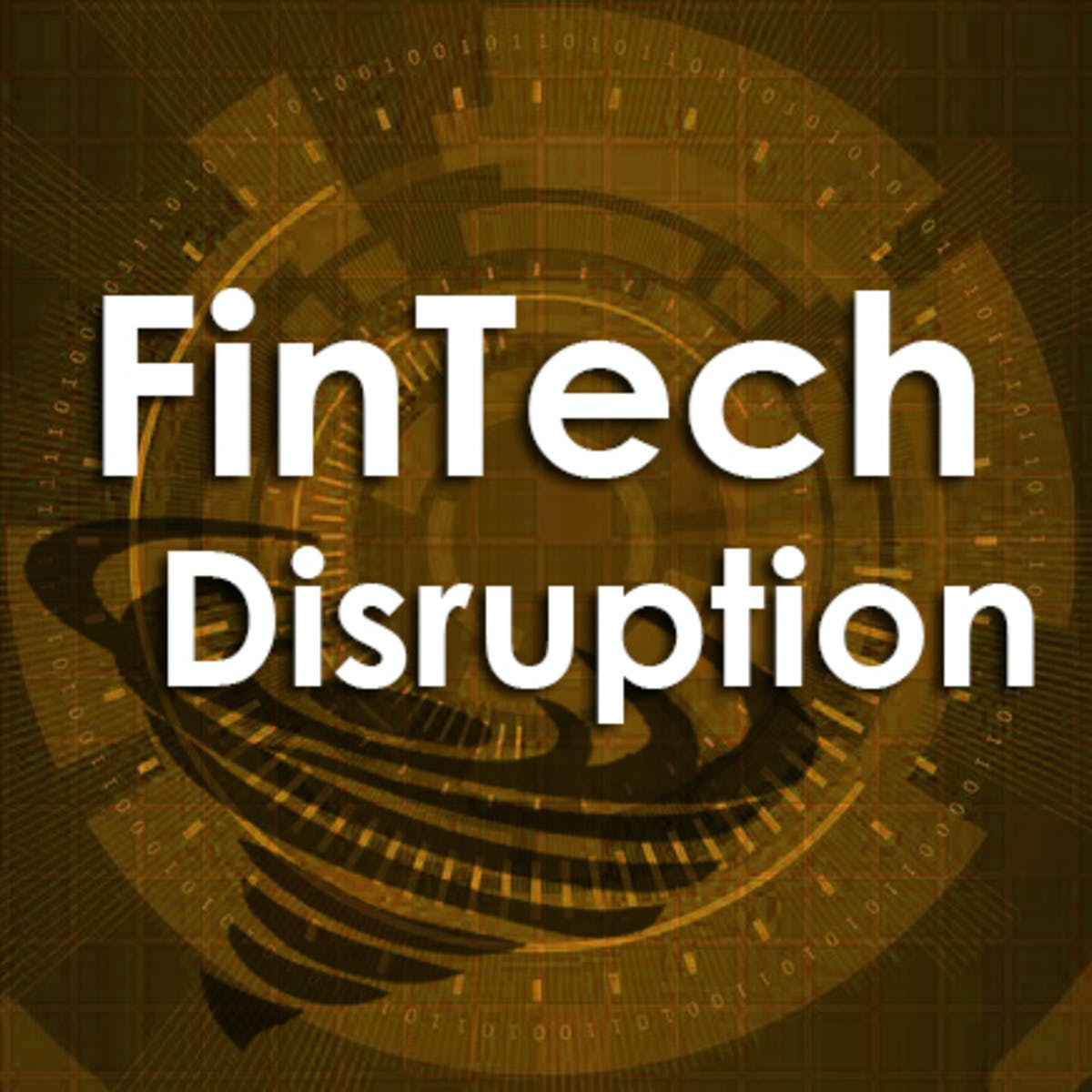 FinTech Disruptive Innovation: Implications for Society
