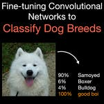 Fine-tuning Convolutional Networks to Classify Dog Breeds by Coursera Project Network