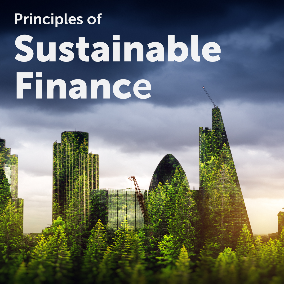 Principles of Sustainable Finance  Coupon
